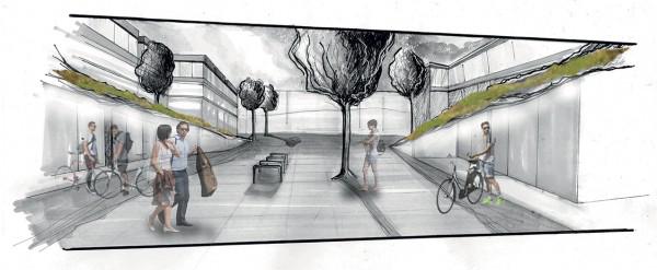 Iris Devaisin havainnekuva Kivistön pyöräparkista